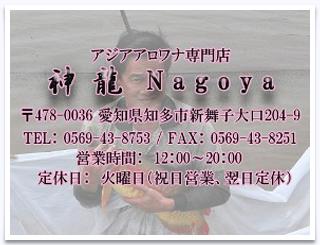 神龍 Nagoya
