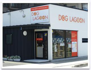 DOG LAGOON