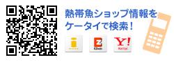 ケータイで熱帯魚ショップ情報検索 http://www.aqua-mart.jp/m/