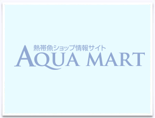 aquarium shop 水景工房