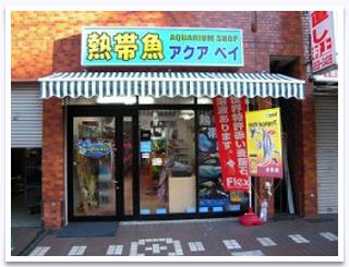aquarium shop アクア ベイ