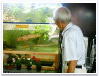 光井水族館