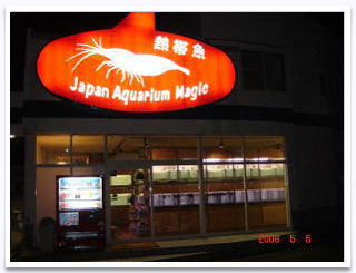 Japan Aquarium Magic