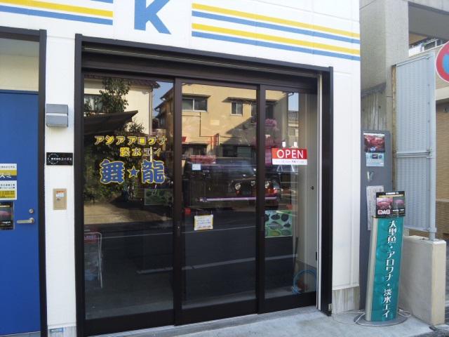 アロワナ・淡水エイ専門店 舞龍